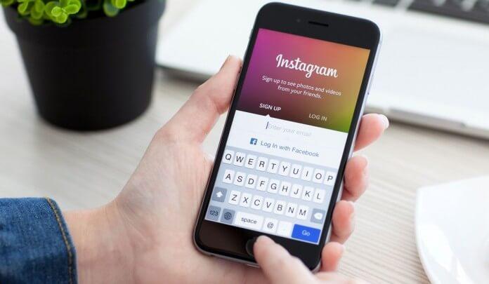 instagram ordem cronologica feed suricato digital