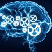 quanto mais pessoas inteligentes precisam socializar menos satisfeitas elas se mostram com a vida